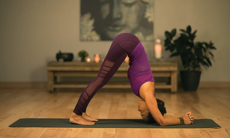 Woman Doing Dolphin Pose